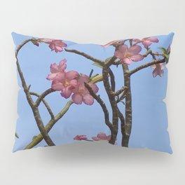 PINK SPLENDOUR Pillow Sham
