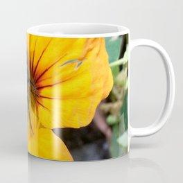 Black bee Coffee Mug