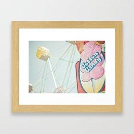 Fun Park Framed Art Print