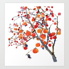 GIFT OF PERSIMMON Art Print
