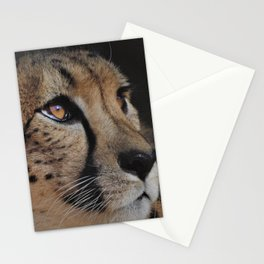 Cheetah Love - Photography Stationery Cards