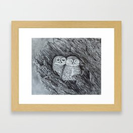 Burrowing Owls Framed Art Print
