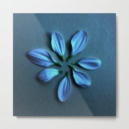 7 pétalos de Crisantemo Metal Print