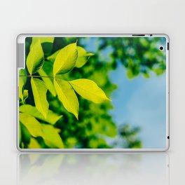 Fresh Green Tree Leaves In Summer, Tree Leaf, Intense Vivid Green, Nature In Summer, Environment Laptop & iPad Skin