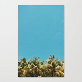 Despeinados Canvas Print