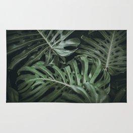 tropical xix Rug