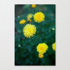 And it was all Yellow Canvas Print