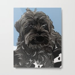 Doug the Schnauzer Metal Print
