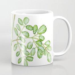 Moringa Watercolor Coffee Mug