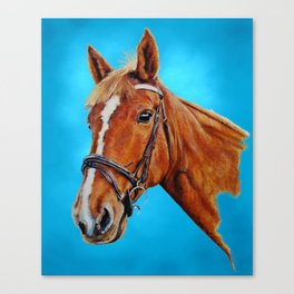 Chestnut mare with white blaze. Painting. Canvas Print
