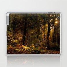 Autumn Woodland Laptop & iPad Skin