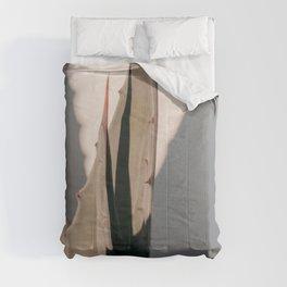Agave Shadow Comforters