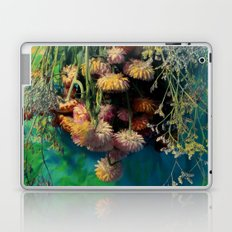Elicriso Laptop & iPad Skin