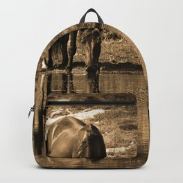 Mother and son drinking Backpack