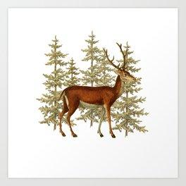 Wandering deer  Art Print