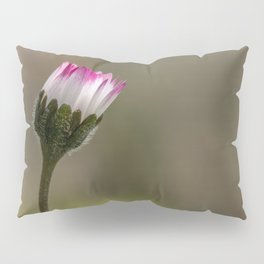 Close daisy Pillow Sham