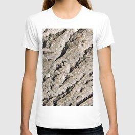 TEXTURES: Walnut Bark T-shirt