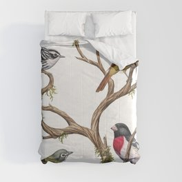 Four Songbirds Comforters