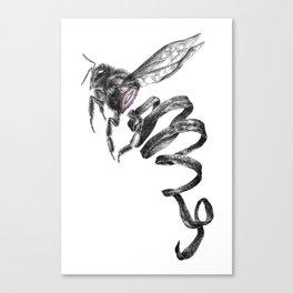 The Fragile Canvas Print