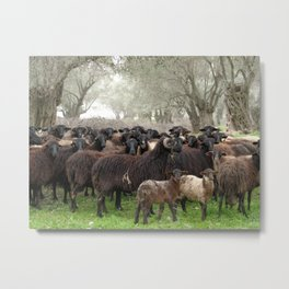 Flocking Metal Print