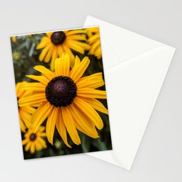 Focus on the Flowers Stationery Cards