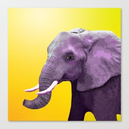 Elephant in the Sunshine Canvas Print
