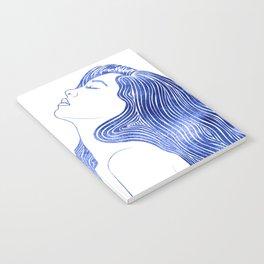 Nereid XXIII Notebook