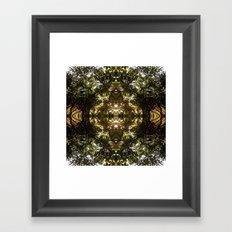 Diamond Of Trees, Ferns at ease.  Framed Art Print