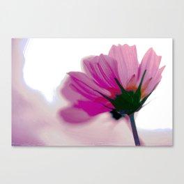 Cosmos + Canvas Print