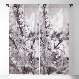 Sour Cherry Tree Black And White Blackout Curtain