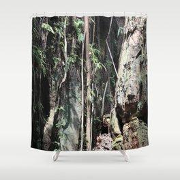 Liana and Rocks Shower Curtain