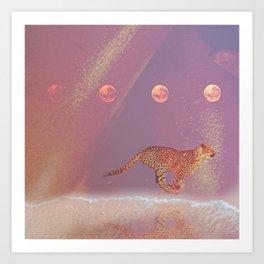 beach cheetah Art Print