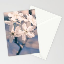 Pear Blossoms 4 Stationery Cards