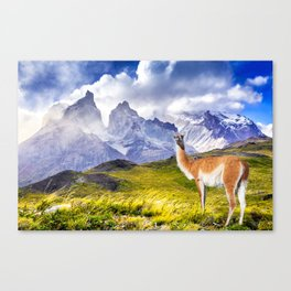 Patagonia landscape in Torres del Paine, Chile Canvas Print