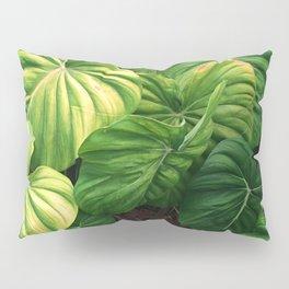 Australia tropical plants Pillow Sham