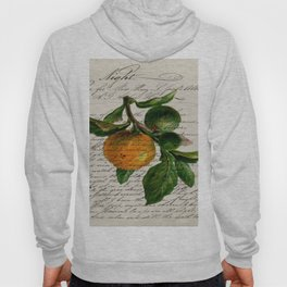 Shabby French botanical print tangerine clementine mandarin orange Hoody