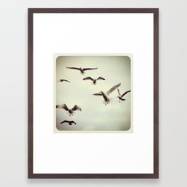 Birds - Instagram Framed Art Print