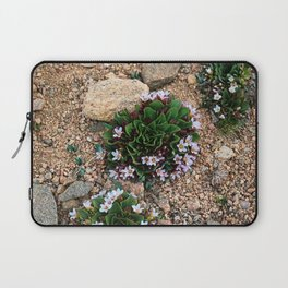 Alpine Spring beauty Colorado Laptop Sleeve