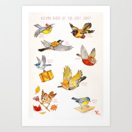 Autumn Birds of the East Coast Art Print