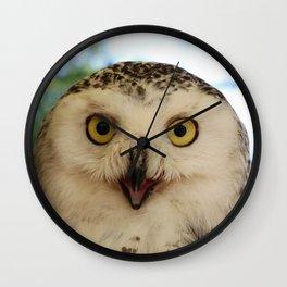 Owl_20180206_by_JAMFoto Wall Clock
