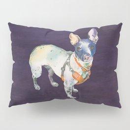 American Hairless Terrier Pillow Sham
