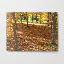 Autumn Carpets  Metal Print