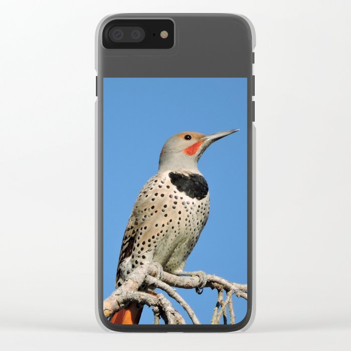 Northern Flicker Clear iPhone Case