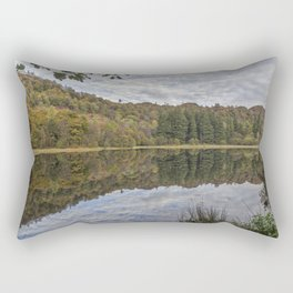 Reflections. Rectangular Pillow
