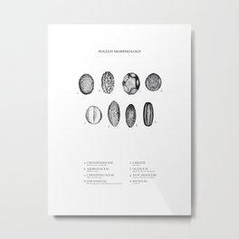 pollen morphology Metal Print