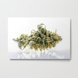 Backlit Kush Metal Print