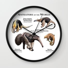 Anteaters of the World Wall Clock