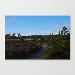 Road to snow Canvas Print