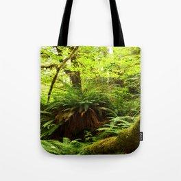 Rainforest Ferns Tote Bag