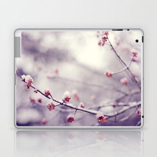 poem of the air Laptop & iPad Skin